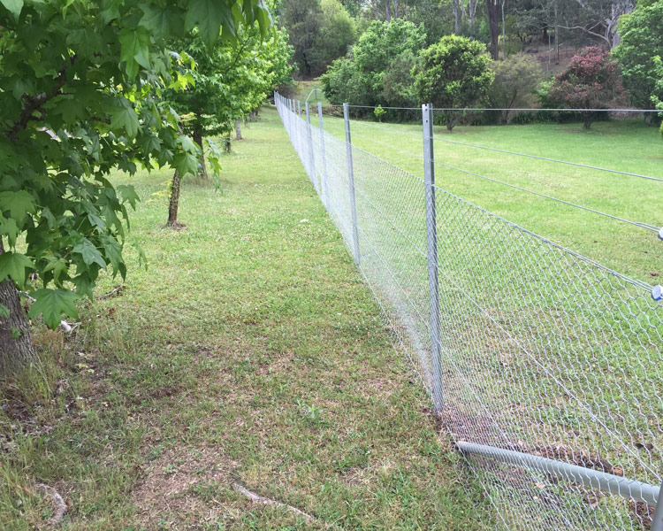 Star Post and Wire Fencing