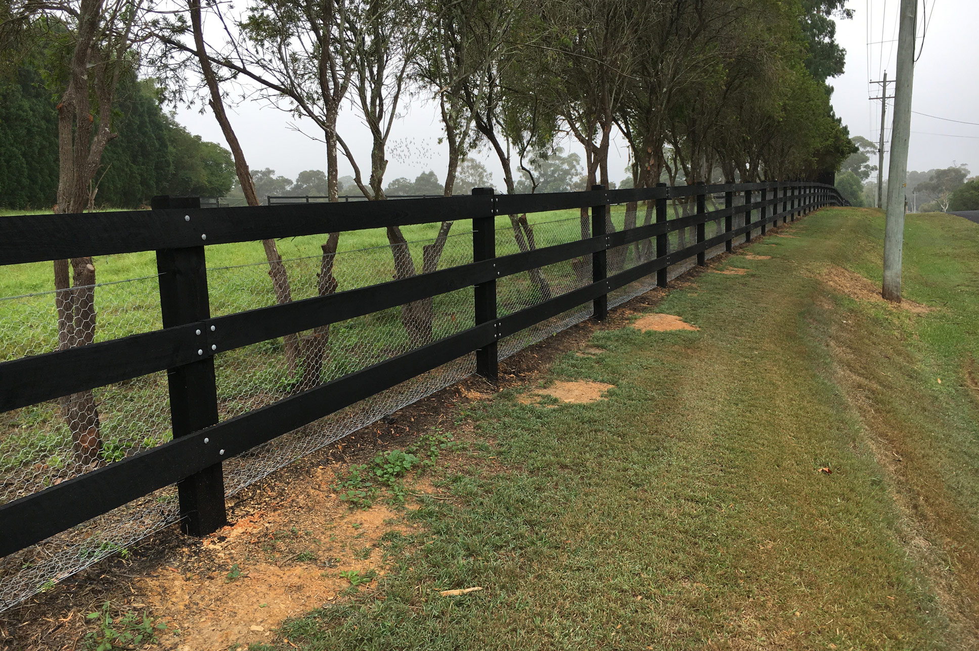 Post And Rail Fencing Post And Rail Fences Stockworx