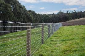Diamond Mesh Livestock Fencing